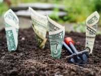bank notes and investing